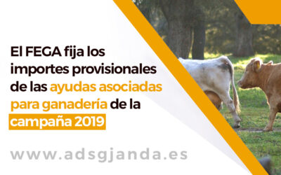 El FEGA fija los importes provisionales de las ayudas asociadas para ganadería de la campaña 2019